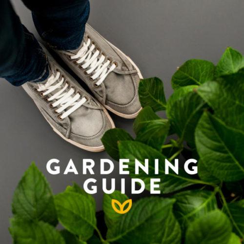 Stodels Garden Centres