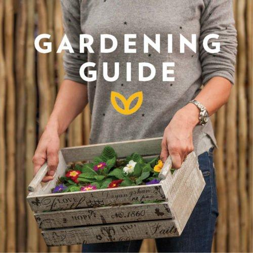 stodels_august_gardening-guide-178-x-178