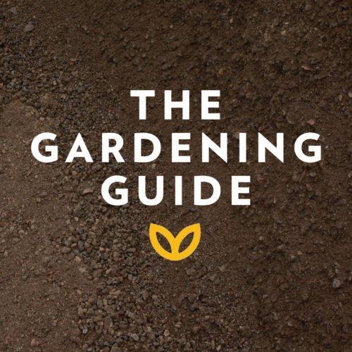 stodels_gardening-guide-540-x-540