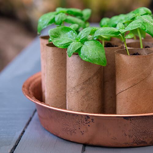 Tips for gardening on a budget | Stodels Nursery