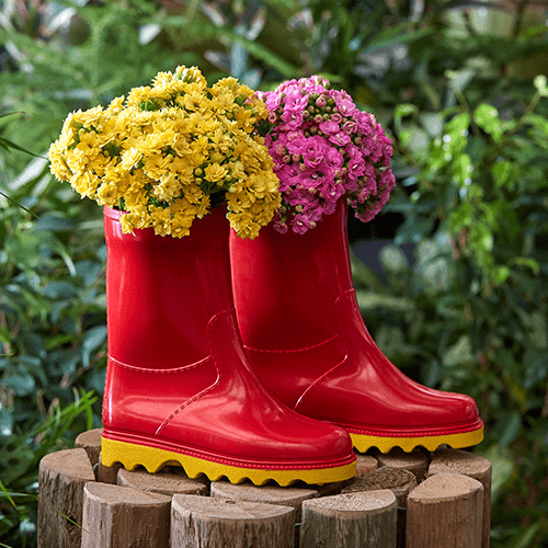 Kids' DIY gumboot garden | Stodels Nursery