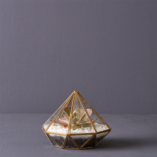 Shiny Diamond Terrarium | Stodels Online Store