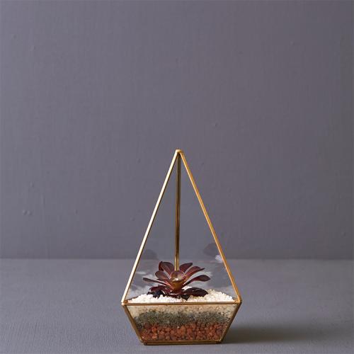 Small Pyramid Terrarium | Stodels Online Store