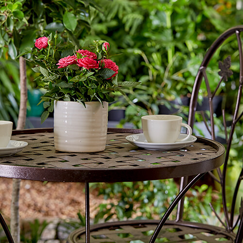 Have a small space? That doesn't mean you can't achieve your big gardening ambitions. With these basic design principles and simple garden ideas, you can transform even the smallest outside nook into a green haven | Stodels Nursery