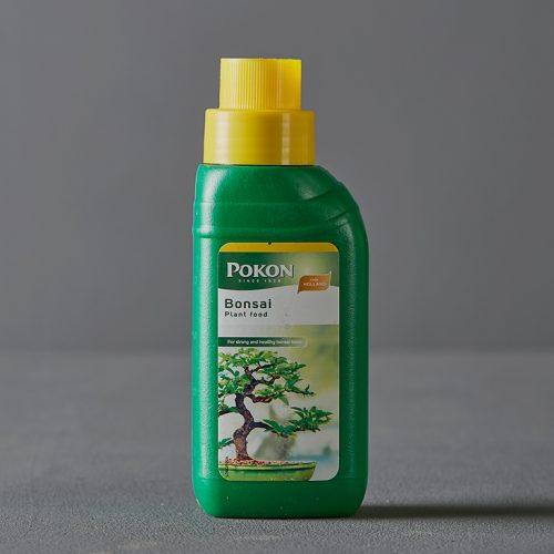 Pokon Bonsai 250ml   Stodels Online Store
